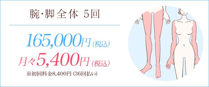 腕・脚全体5回 158000円、月々5400円※初回料金5972円(36回払い)
