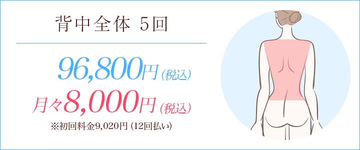 背中全体5回 96000円、月々8600円※初回料金9752円(12回払い)