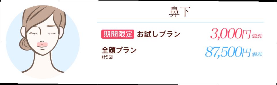 横浜マリアクリニックの鼻下医療レーザー脱毛お試しプラン